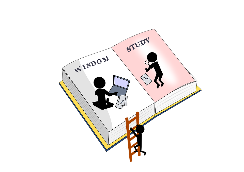 Open book with wisdom on one page and study on the other page. A silouhette of a person is climbing a ladder to the page with wisdom on it.
